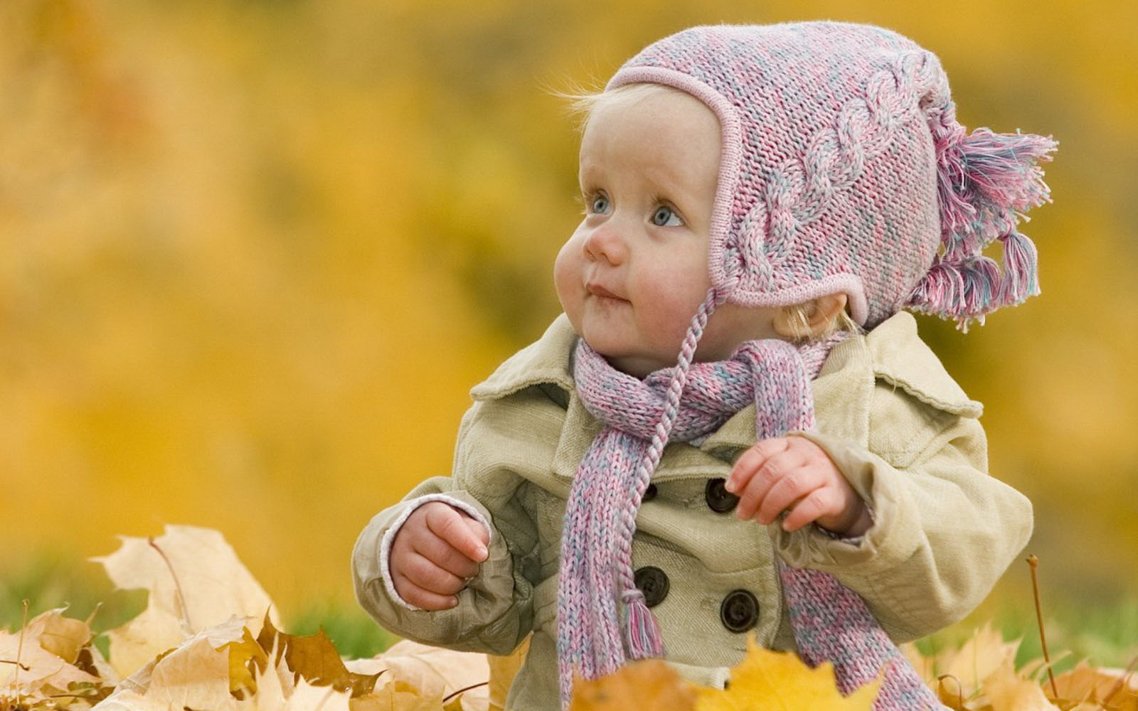 wallpapers Cute Babies Hd Wallpapers 1600x1000