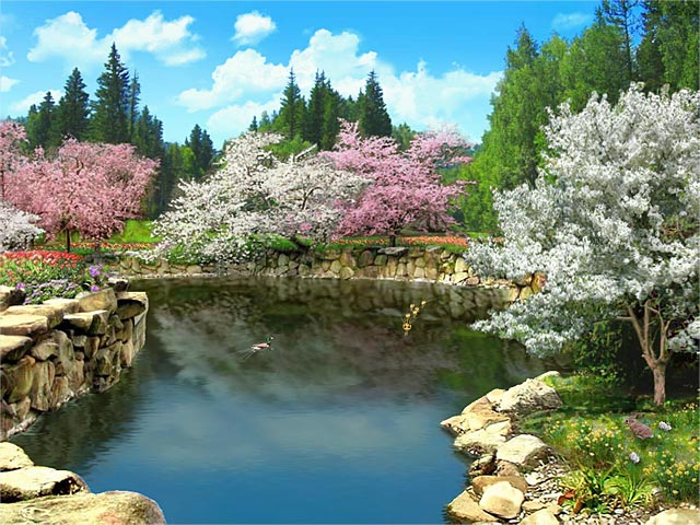 Spring Blossom 3D screensaver 640x480
