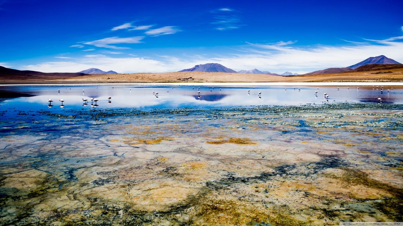 Caapa Lake Bolivia HD 4K HD Desktop Wallpaper for 4K Ultra HD 1366x768