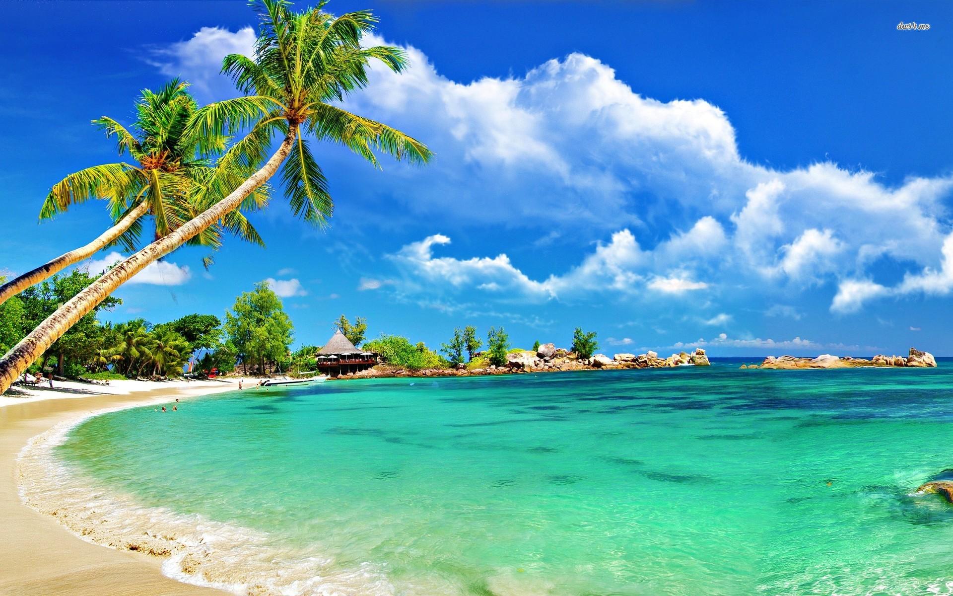 Tropical Beach wallpapers HD   446440 1920x1200