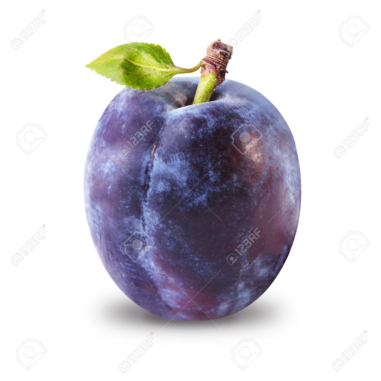 One Ripe Plum Isolated On White Background Stock Photo Picture 1300x1300