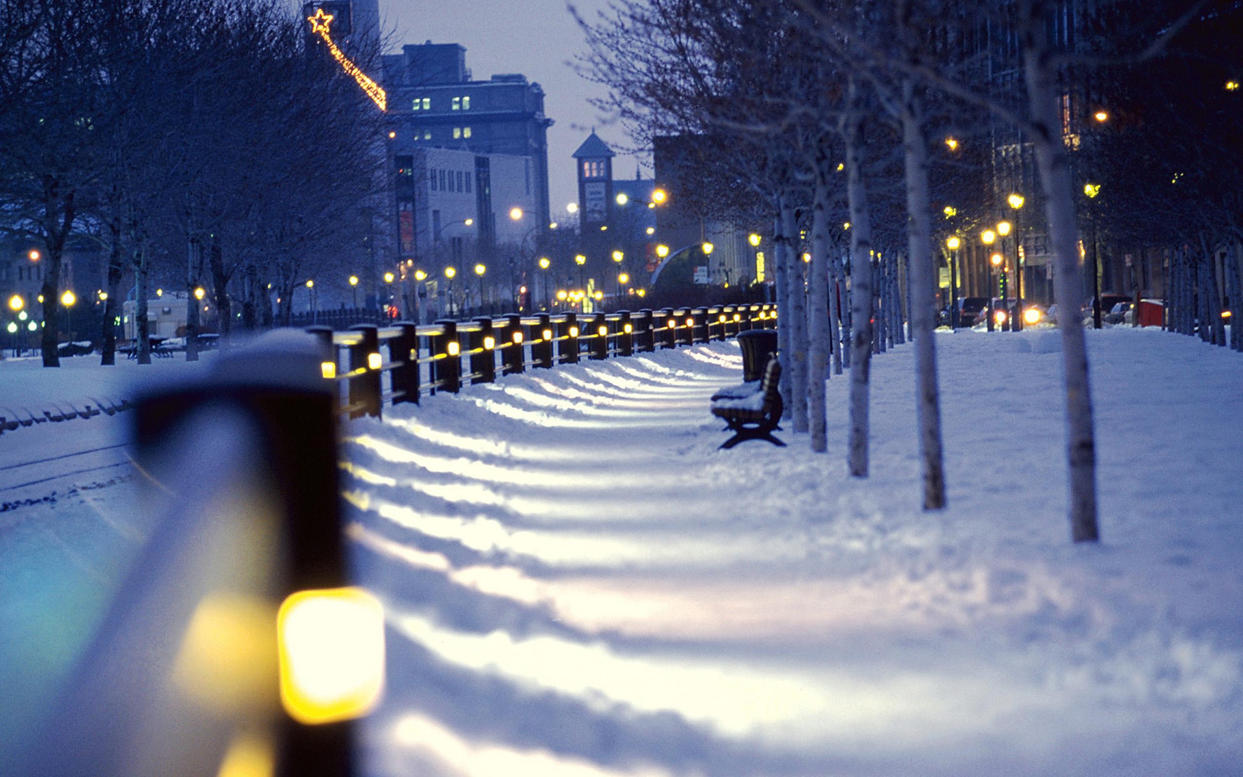 Winter Nature Wallpapers HD 11467 Wallpaper Download HD 2560x1600