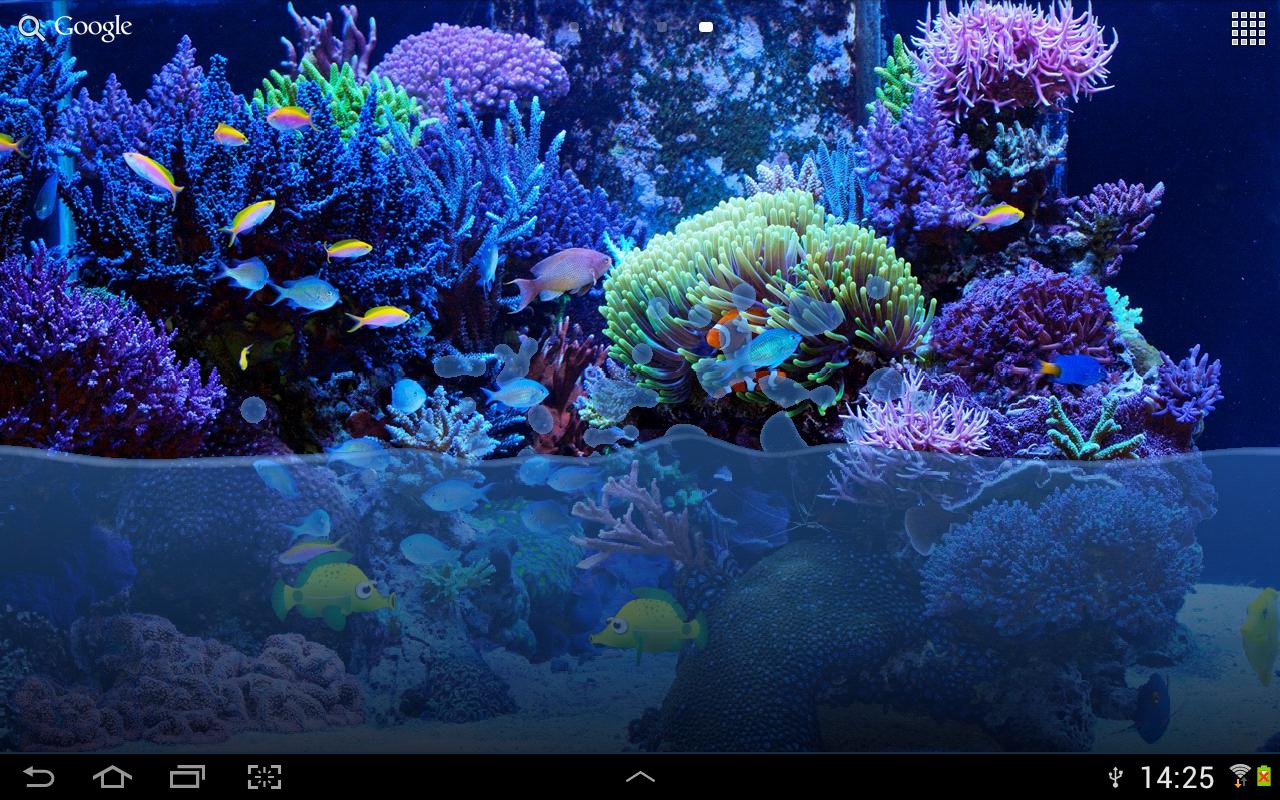 fish tank live wallpaper this wallpaper simulates water in a fish tank 1280x800