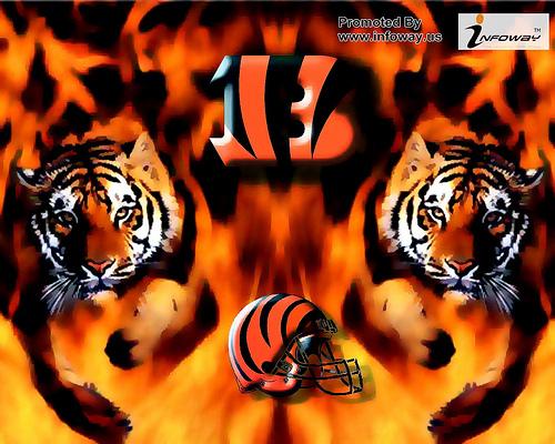 Auburn Tigers Wallpaper HD