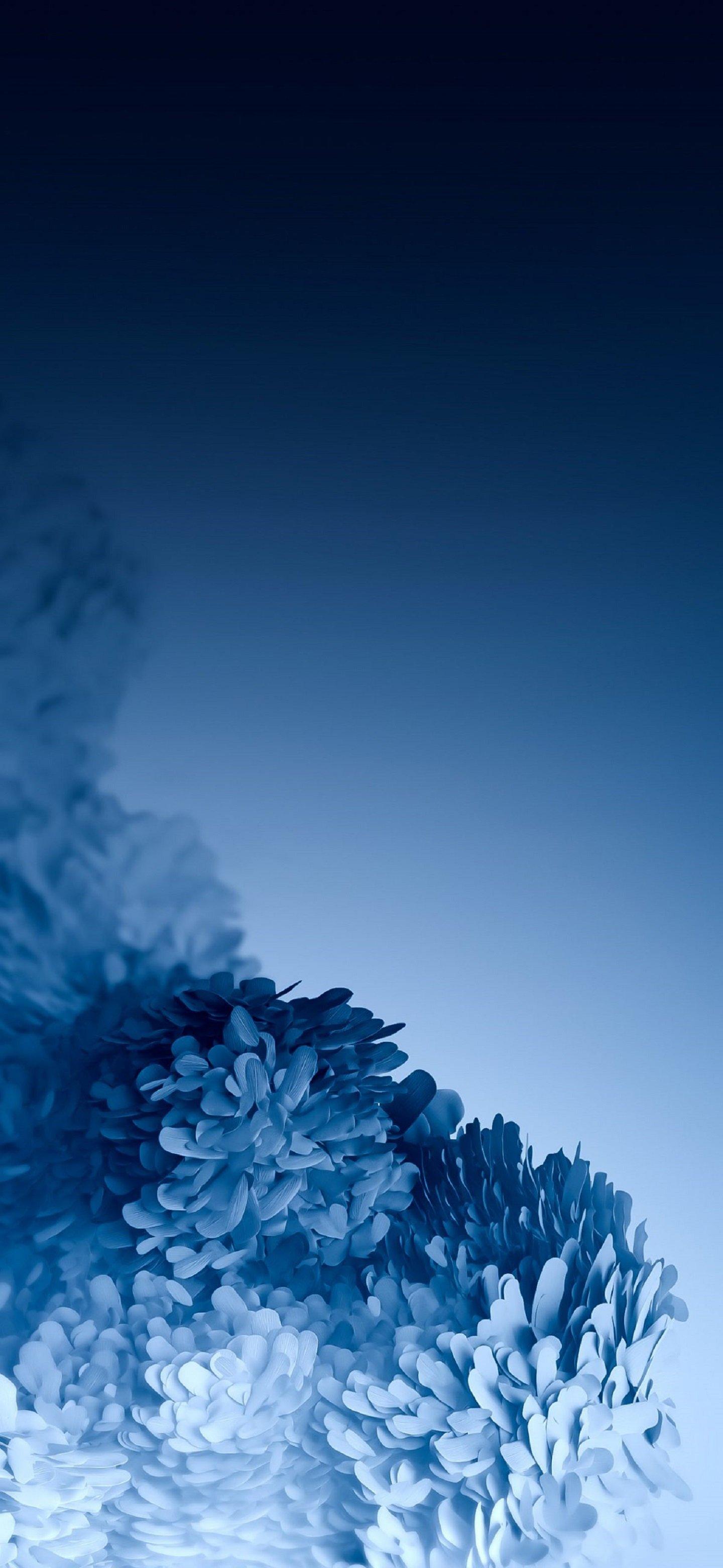 Samsung Galaxy S20 Wallpaper UseWallpaper 11 1440x3120 2190000065 1440x3120