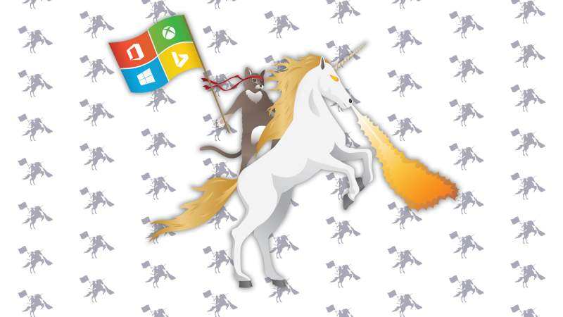 Windows 10 Wallpaper Ninjacat Download wenn geschmacklos dann 800x450