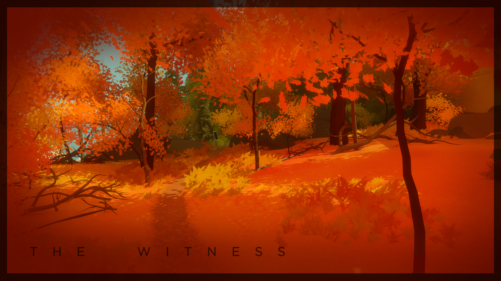 Wallpapers The Witness 1920x1080