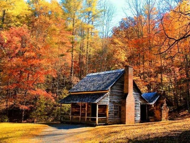 log cabin with autumn background Primitive Historic Architecture 720x540
