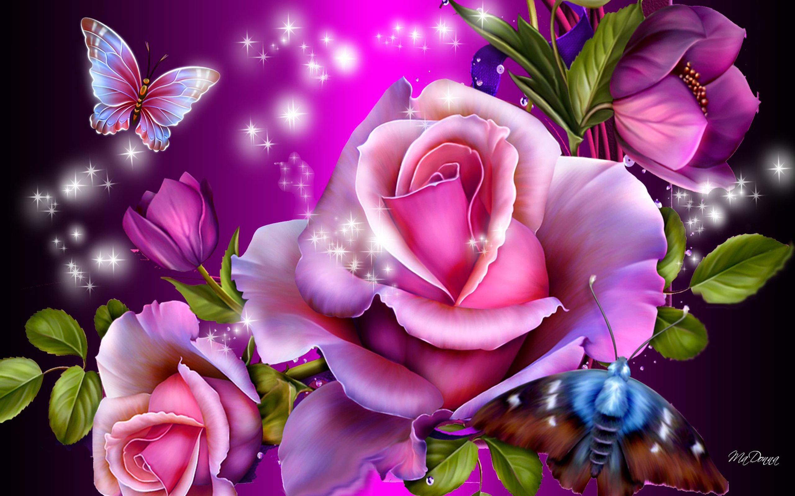 Roses and Butterflies HD Wallpaper Background Image 2560x1600 2560x1600