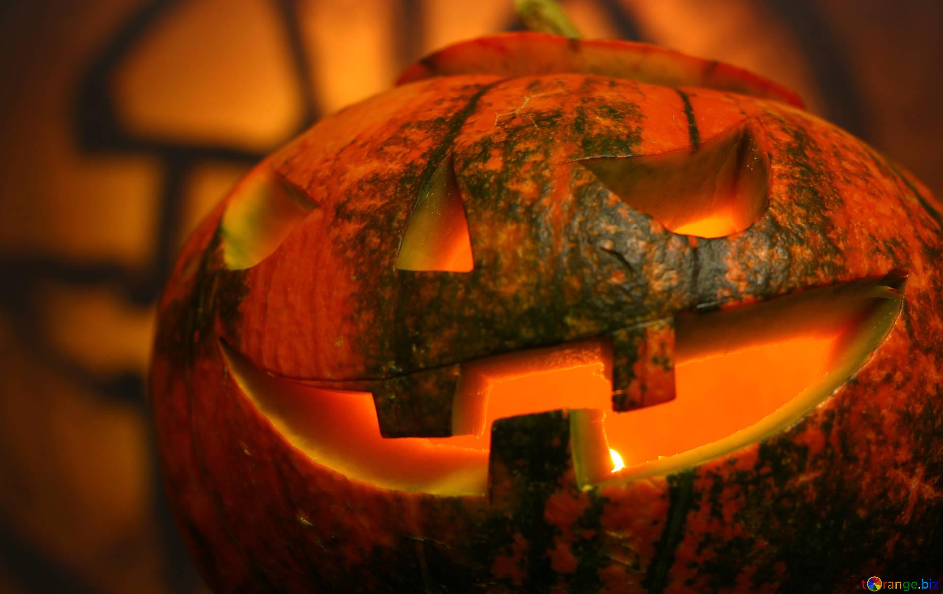 Halloween backgrounds halloween pumpkin halloween 46194 1920x1209