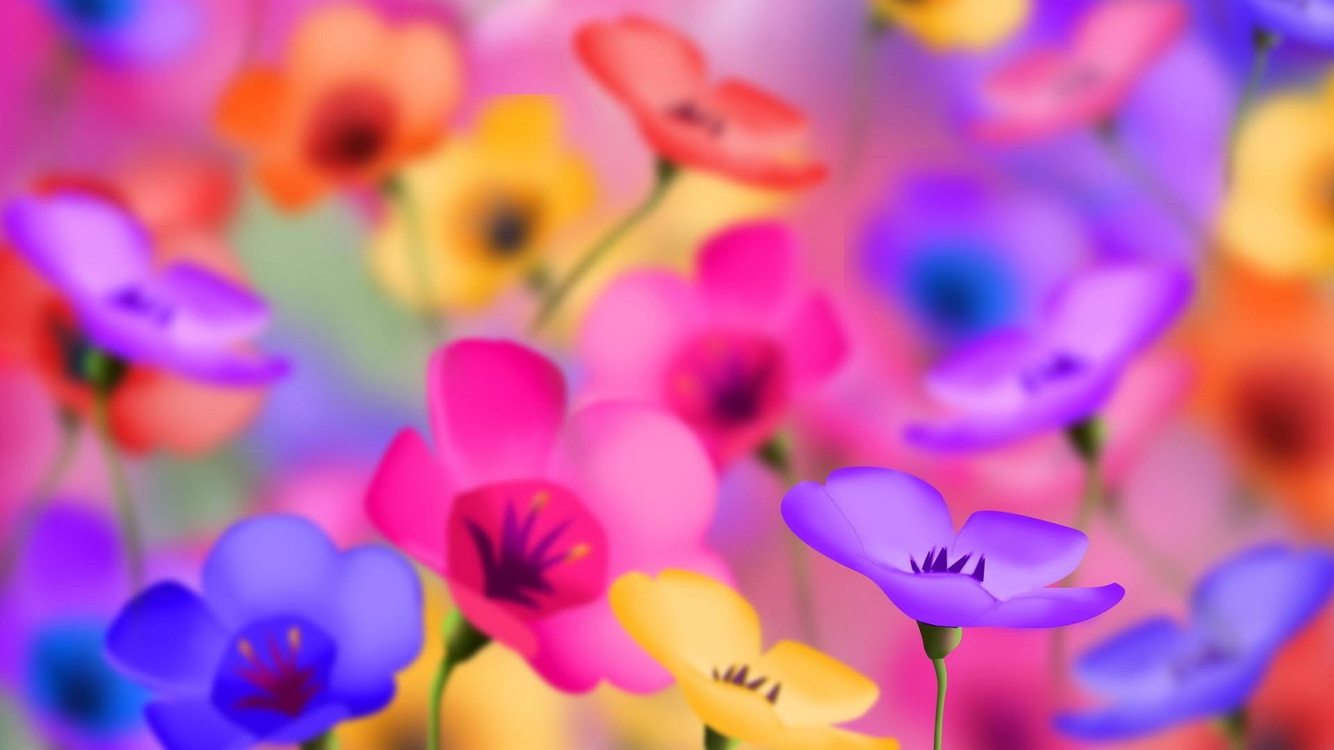 Full HD Flower Wallpaper WallpaperSafari