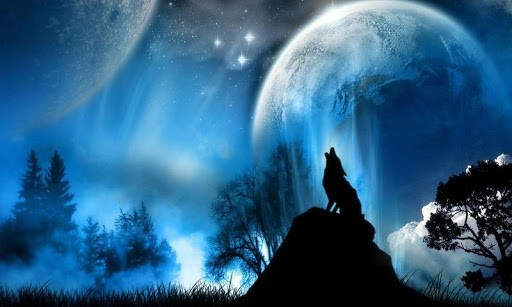 Wolf Galaxy Wallpaper App Android 512x307