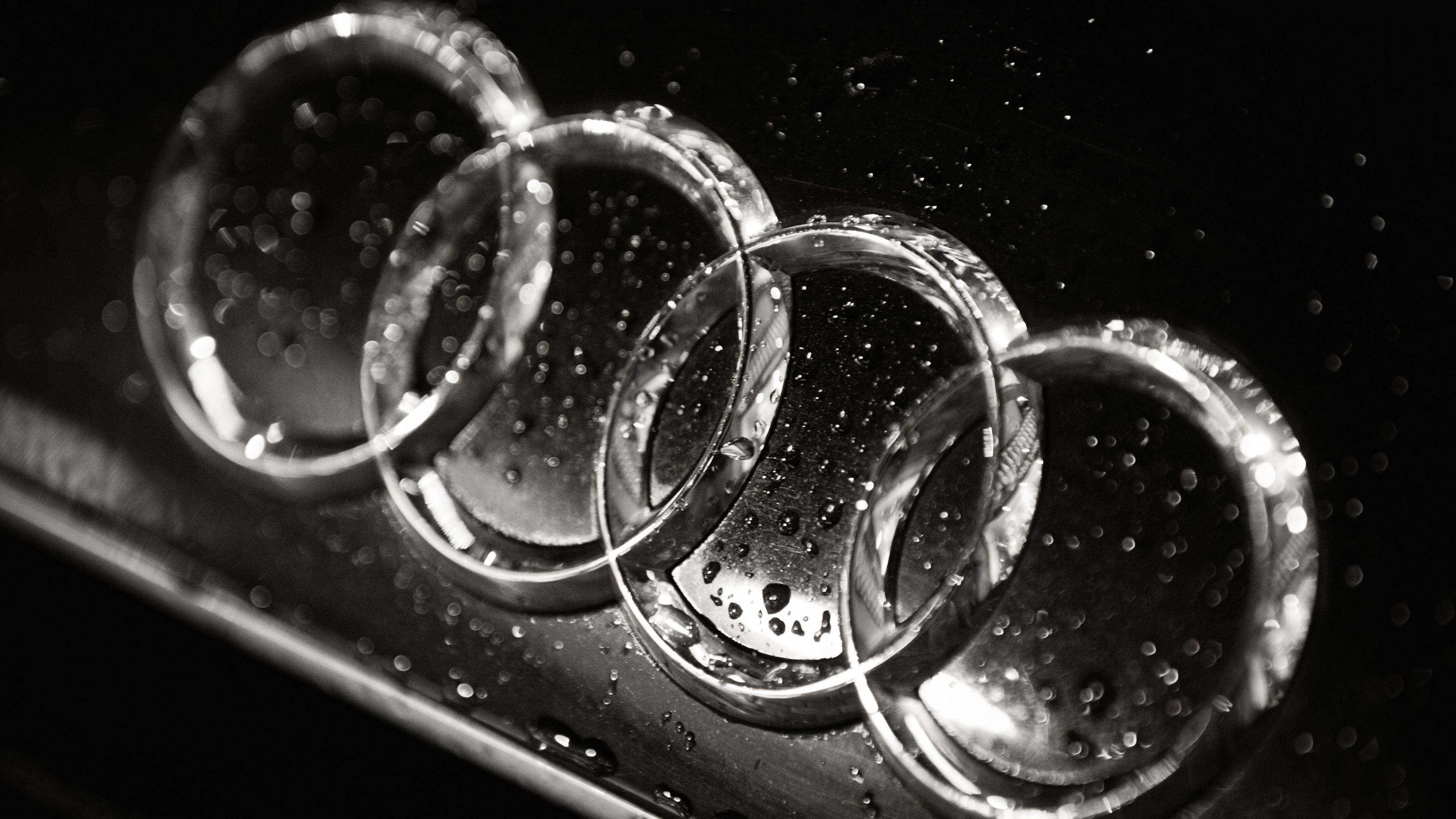15294 Audi Logo 4K UHD Wallpaper 38402160 3840x2160