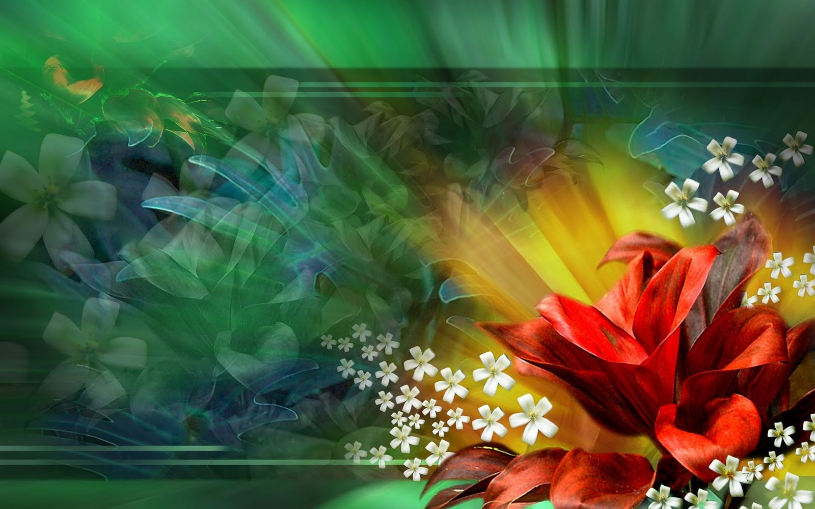 Beautiful Flowers Wallpaper   1920 x 1200 Hd Desktop Wallpaper 1600x1000