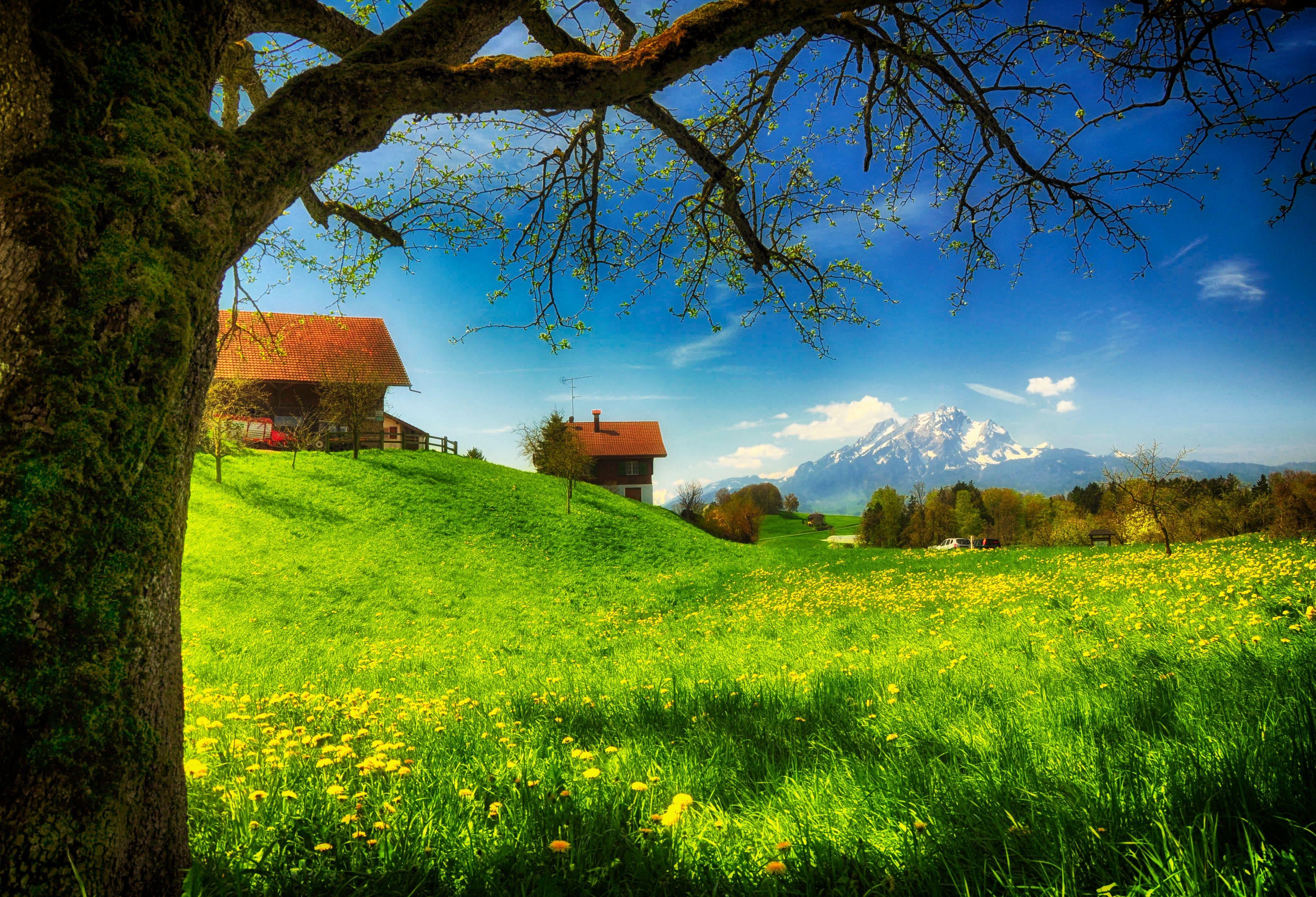 домики, горы, трава  № 307727 без смс