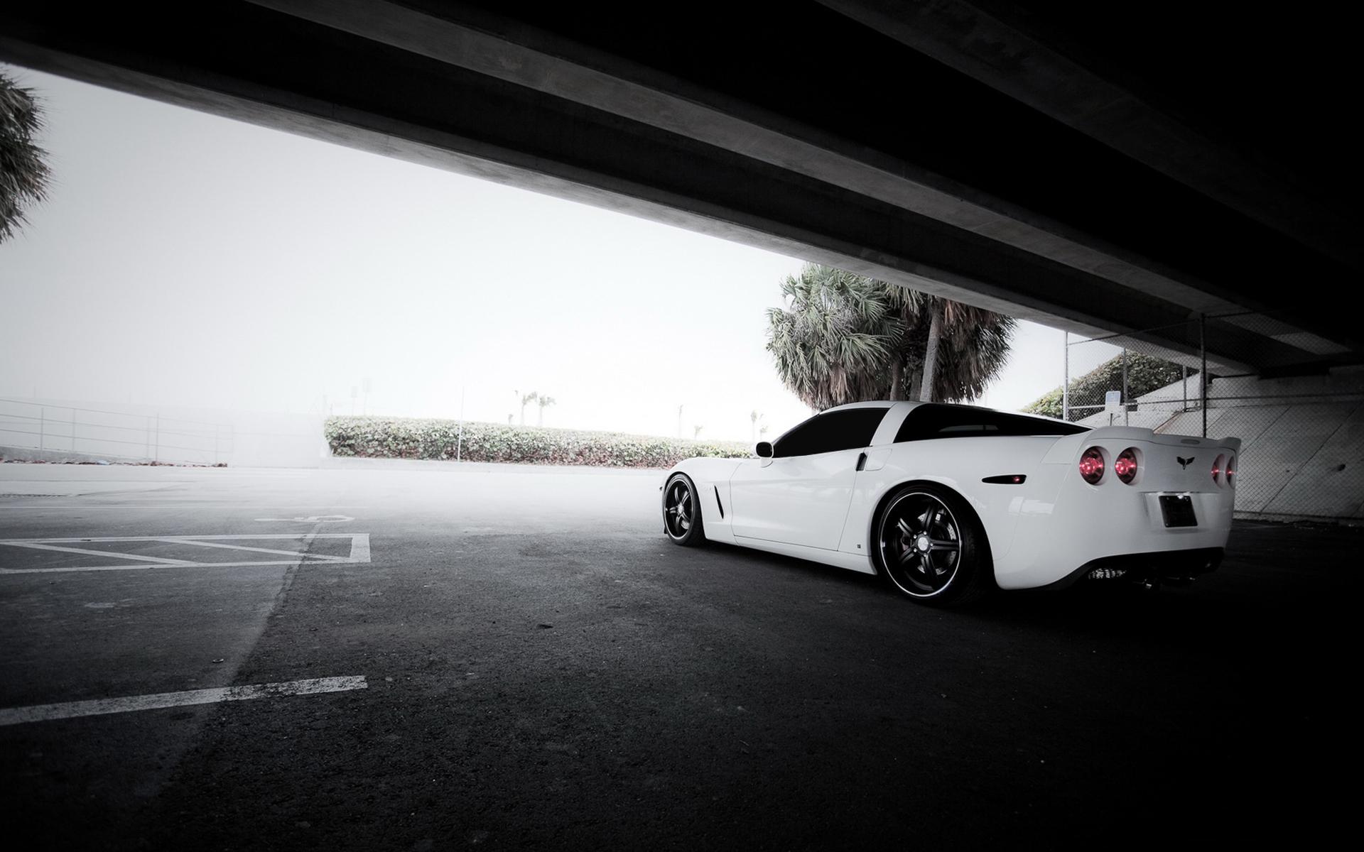 Corvette Wallpapers 9DX8OHT   4USkY 1920x1200