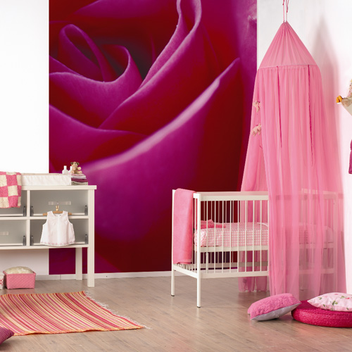 ALL WALL MURALS wallpapers and borders to buy online 500x500