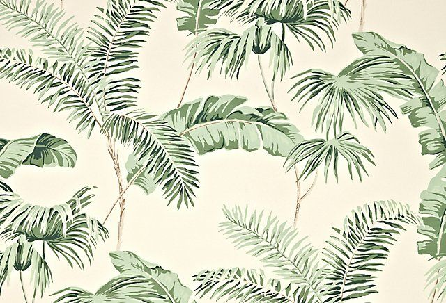 One Kings Lane   Sun Drenched Rooms   Negril Wallpaper Cream 640x436