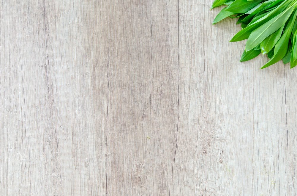 Wood Wallpapers HD Download [500 HQ] Unsplash 1000x662