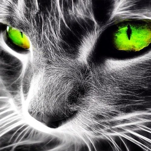 Neon cat wallpaper wallpapersafari - Cool backgrounds of cats ...