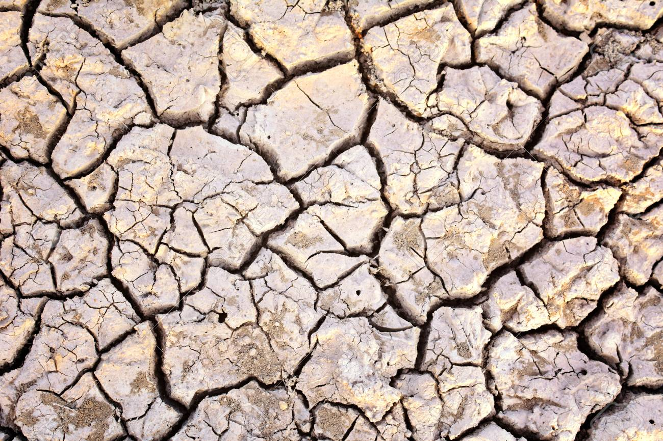 Crack Dry Background Concept Drought Stock Photo Picture And 1300x866