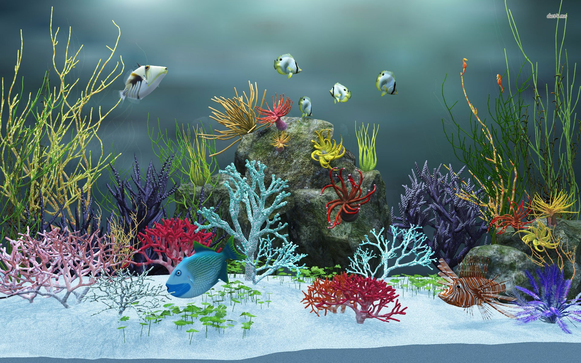 Moving fish aquarium wallpaper wallpapersafari for Fish tank wall
