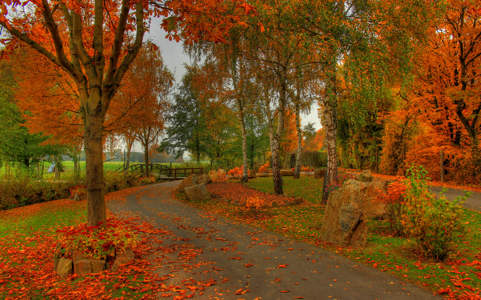 hdr autumn colors - Desktop Wallpaper