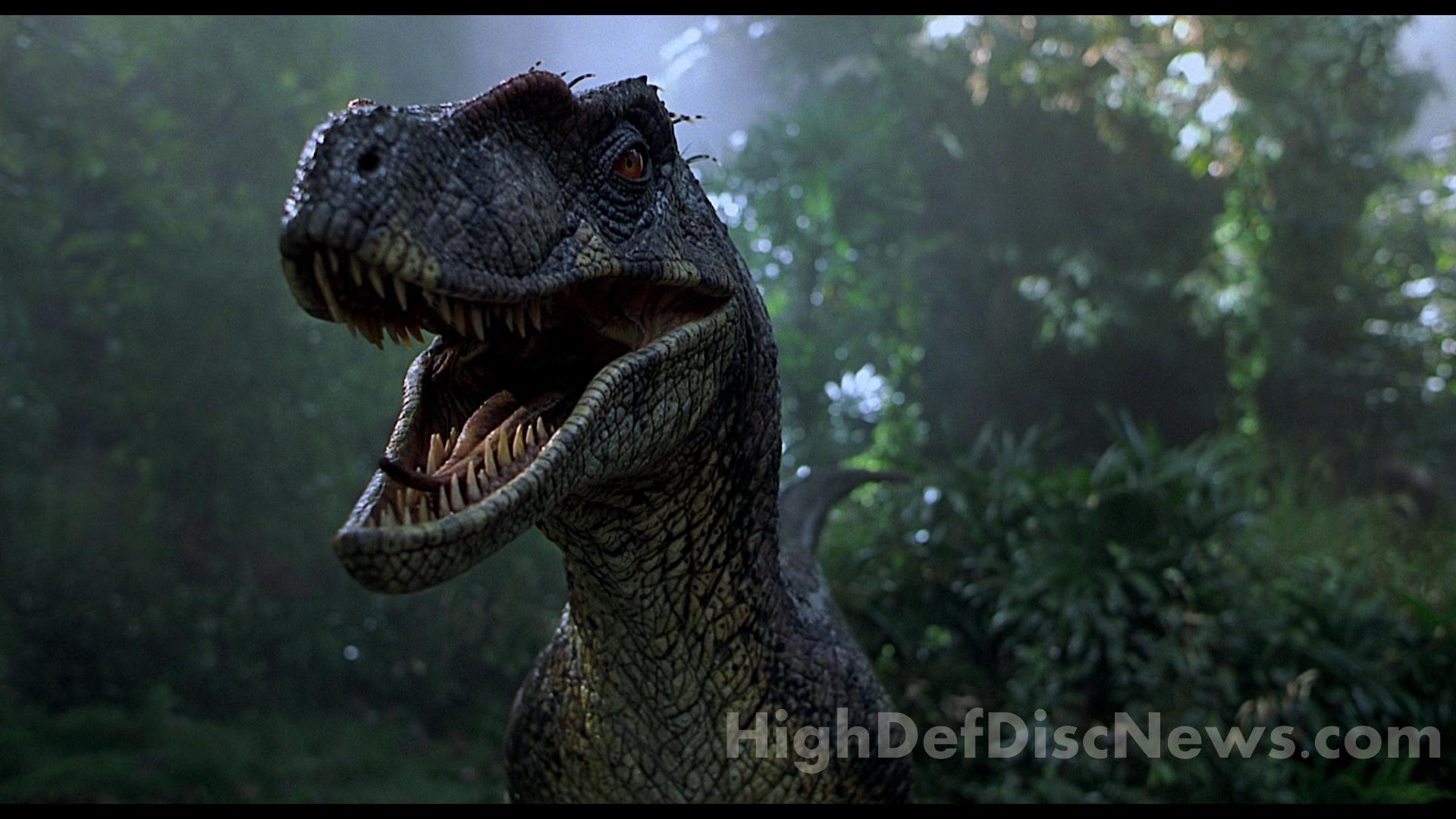 Jurassic Park Velociraptor Skeleton Tattoo Spinosaurus Wallpaper ...