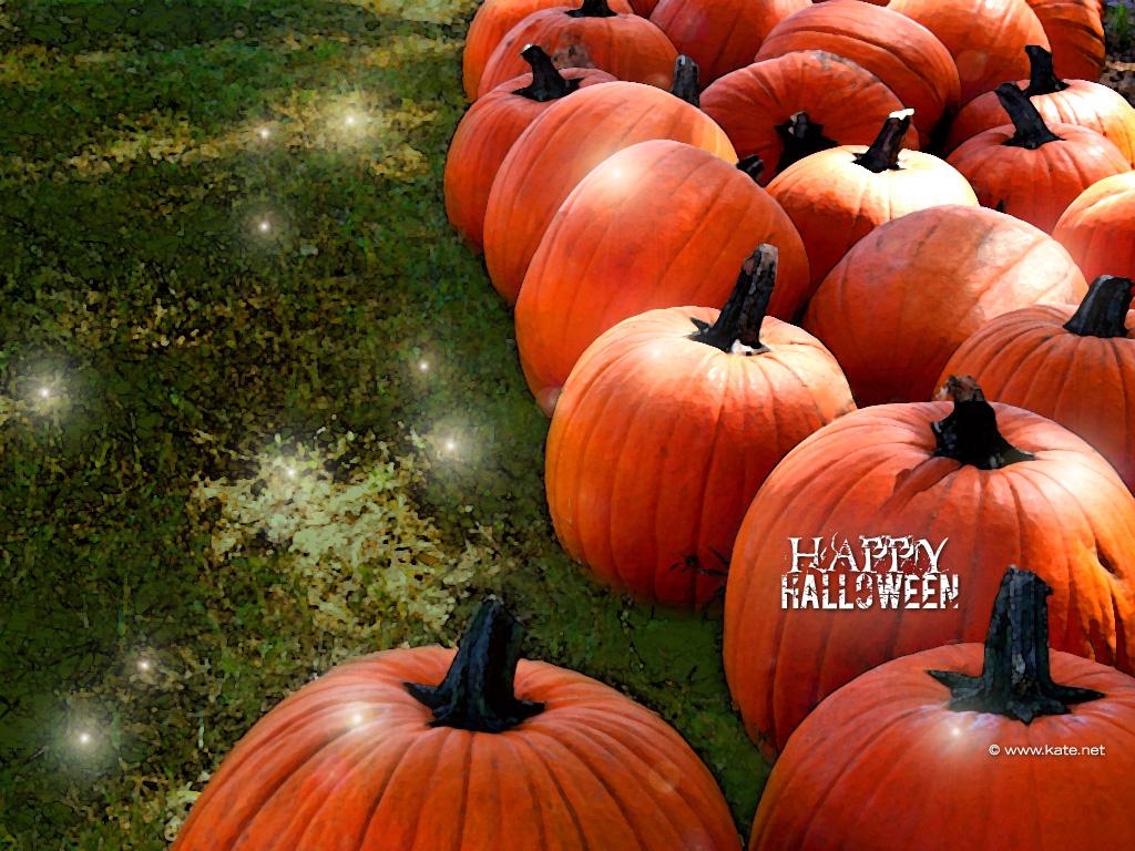 Halloween Wallpapers Halloween Desktop Backgrounds on 1024x768