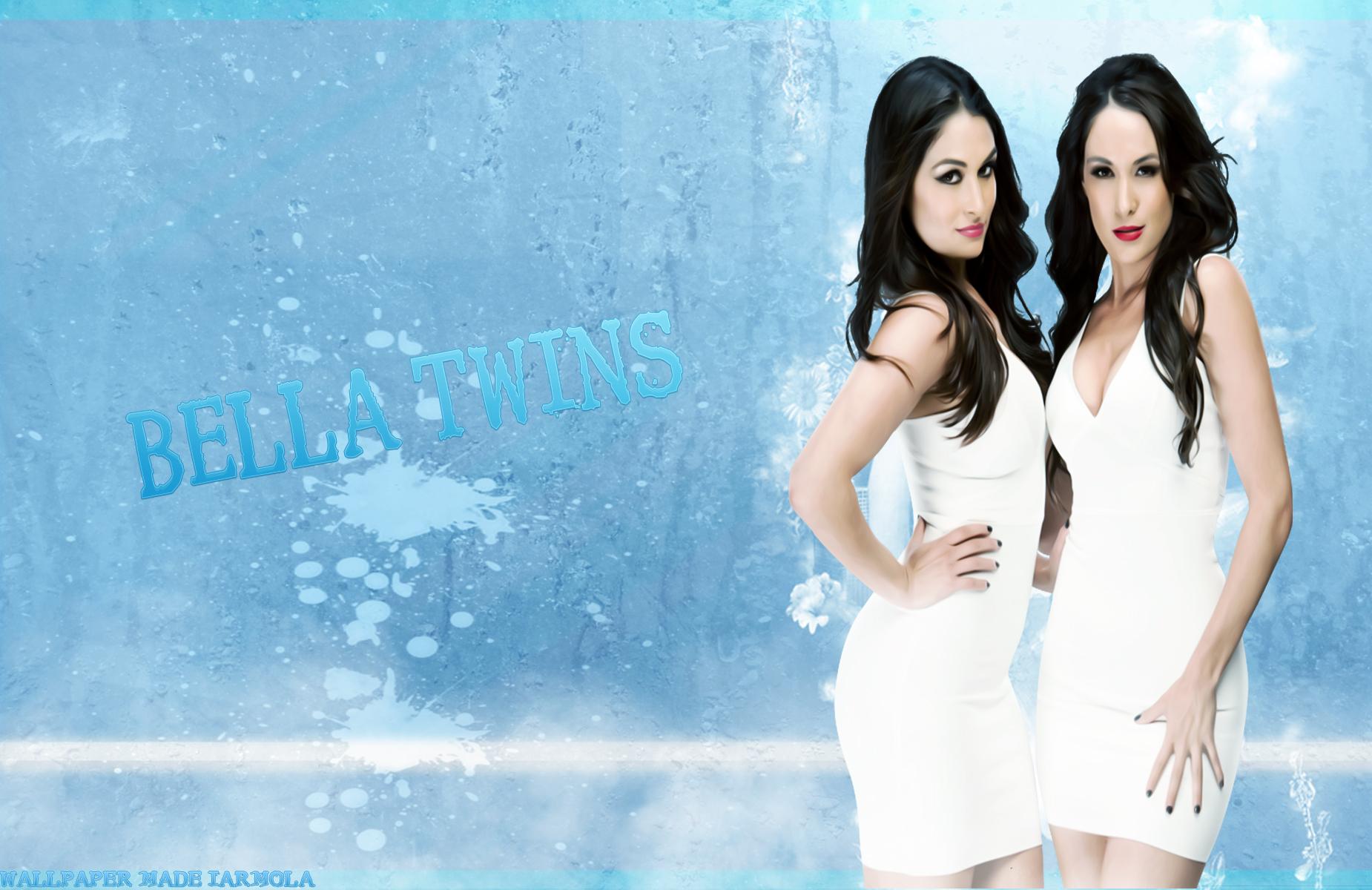the bella twins wallpaper wallpapersafari