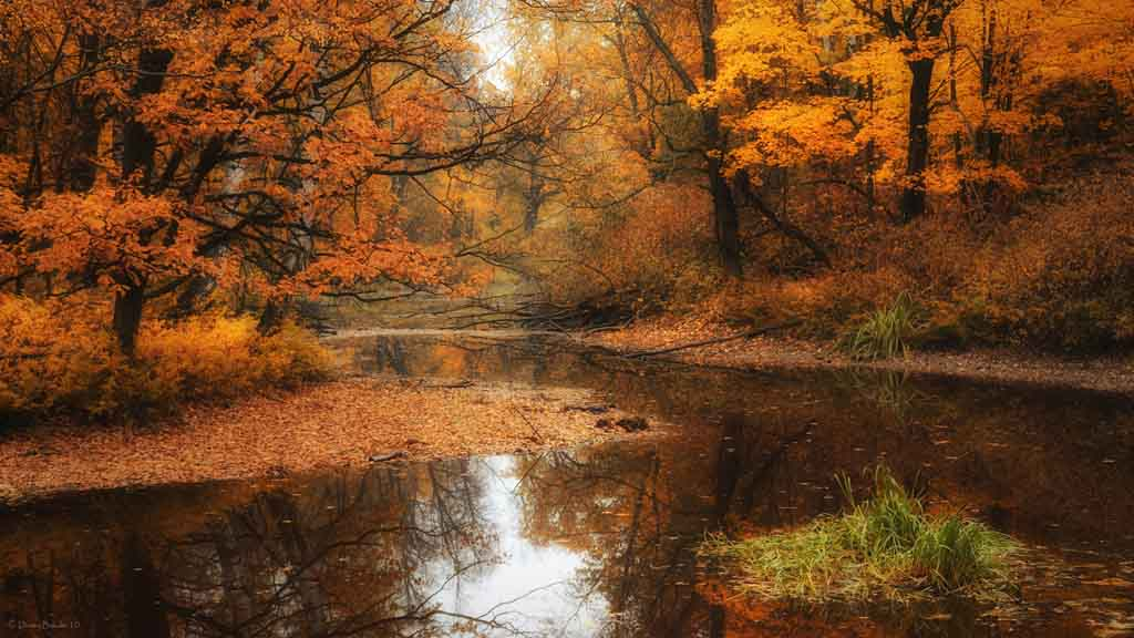 free desktop backgrounds autumn wallpaper moving for windows 7