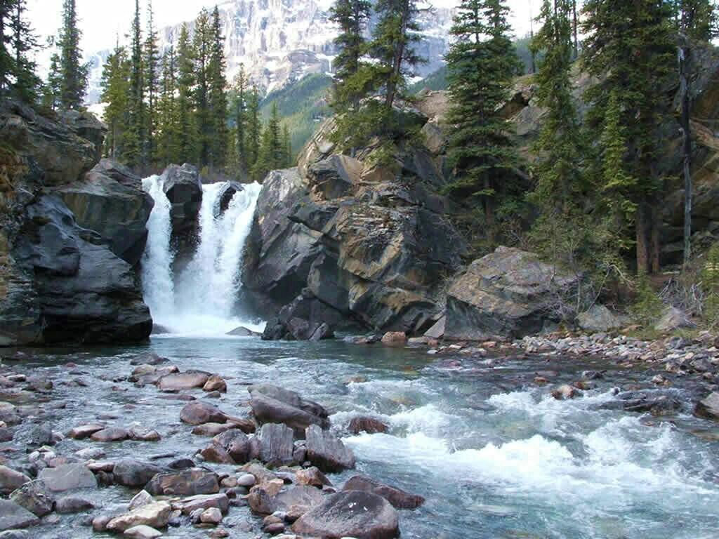 river and creeks wallpaper   wallpapersafari