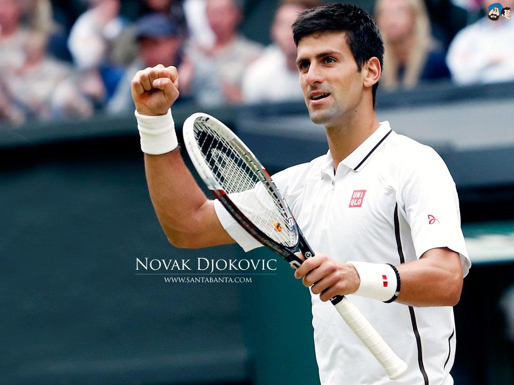 Novak Djokovic Wallpaper 14 1024x768