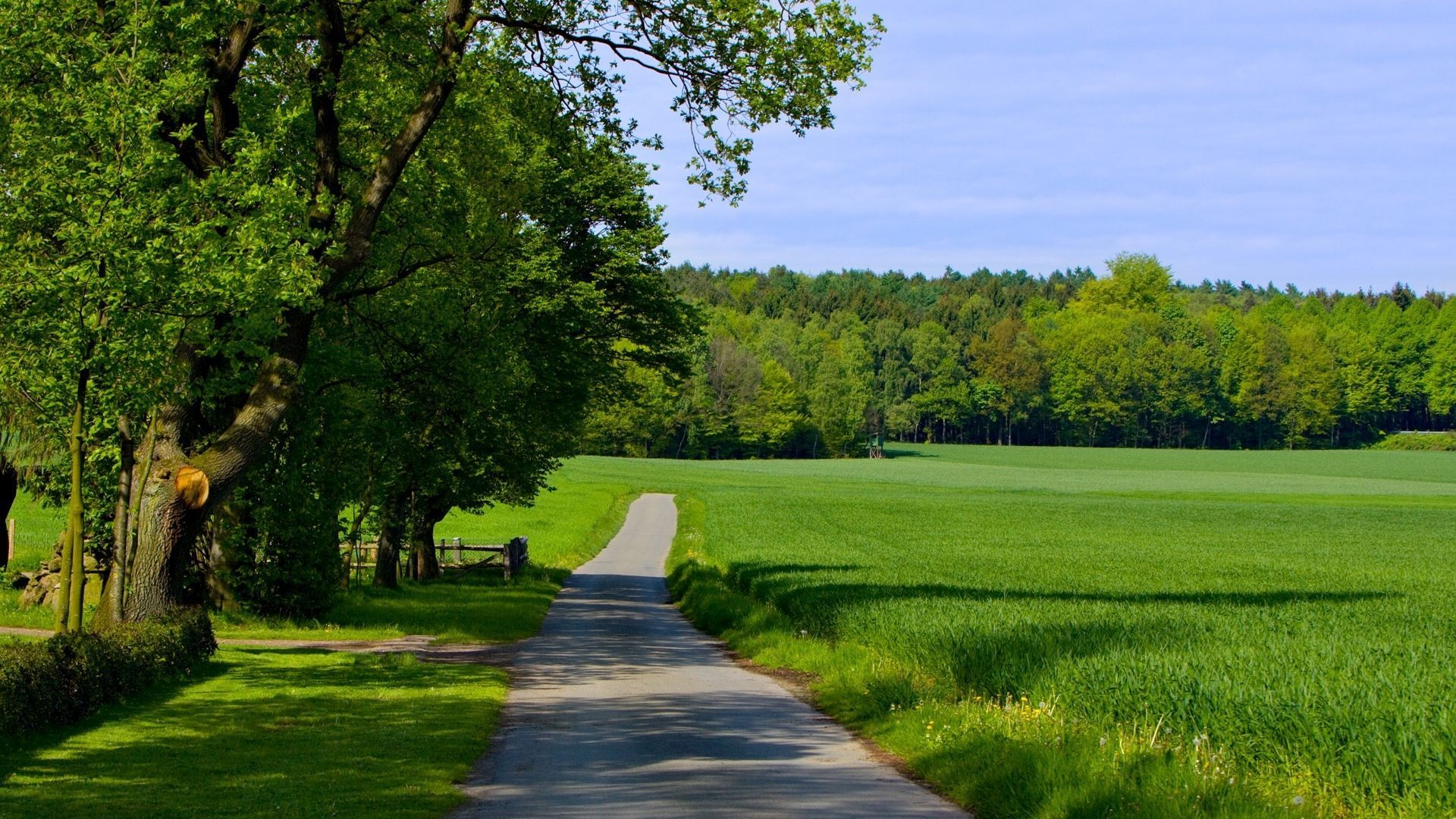 Countryside road on a summer day desktop wallpaper 29485 1920x1080