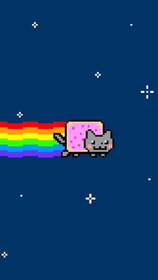Grumpy Cat Iphone Wallpaper 325x576