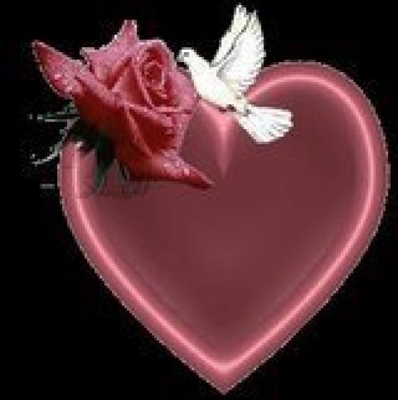 beautiful wallpapers hd download Beautiful Heart Wallpapers 564x567