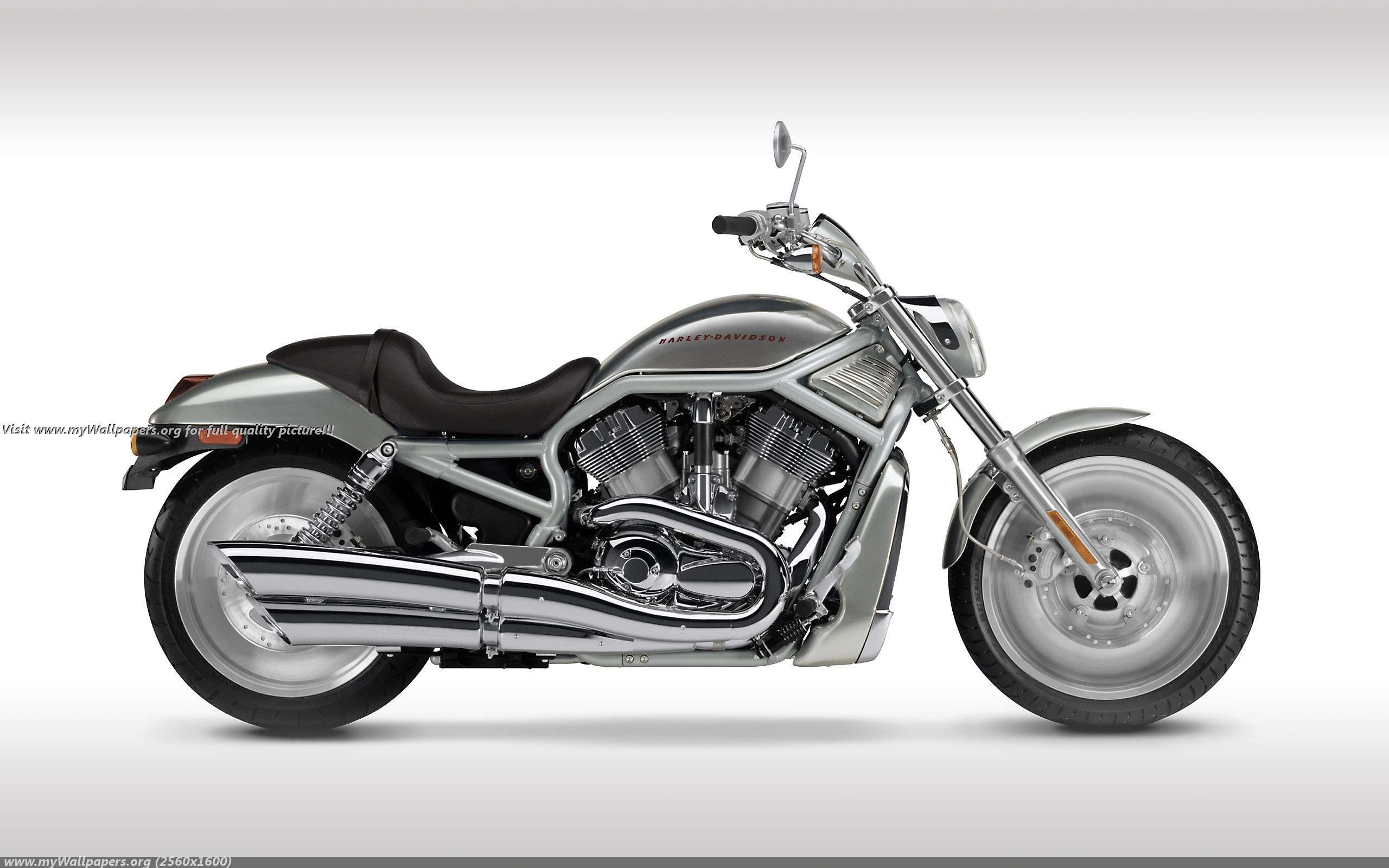 muscle wallpapers harley davidson v rod muscle wallpaper download 2560x1600