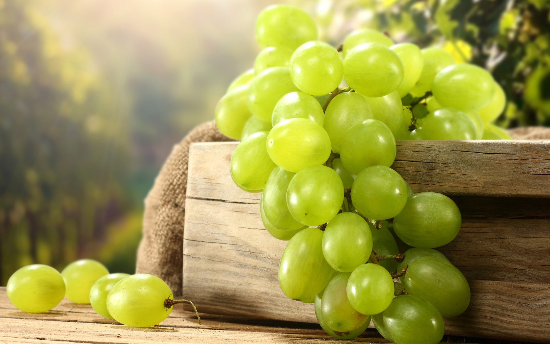 Sweet green grapes wallpaper   ForWallpapercom 1920x1200