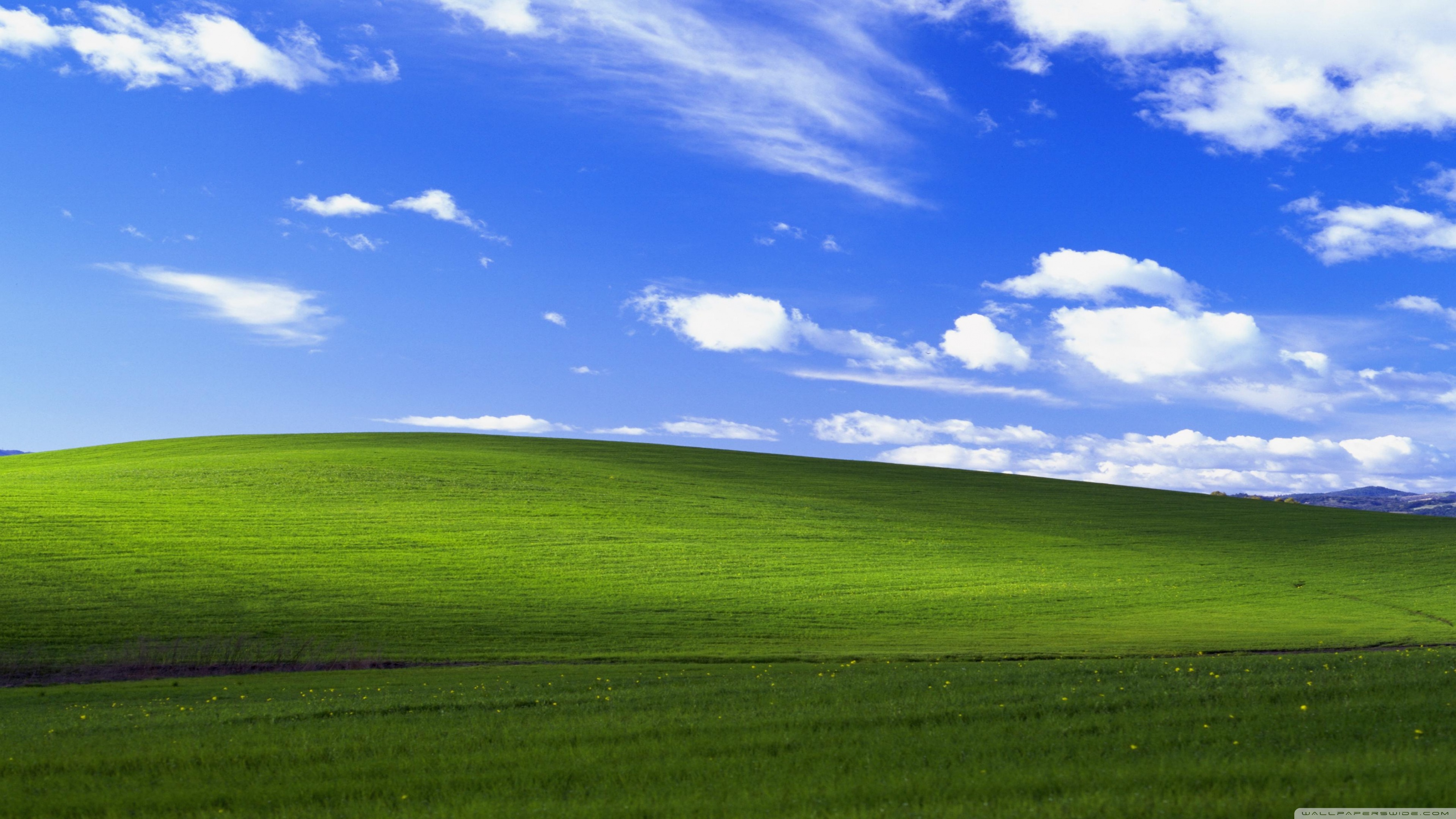 Windows XP Ultra HD Desktop Background Wallpaper for 4K UHD TV 3554x1999