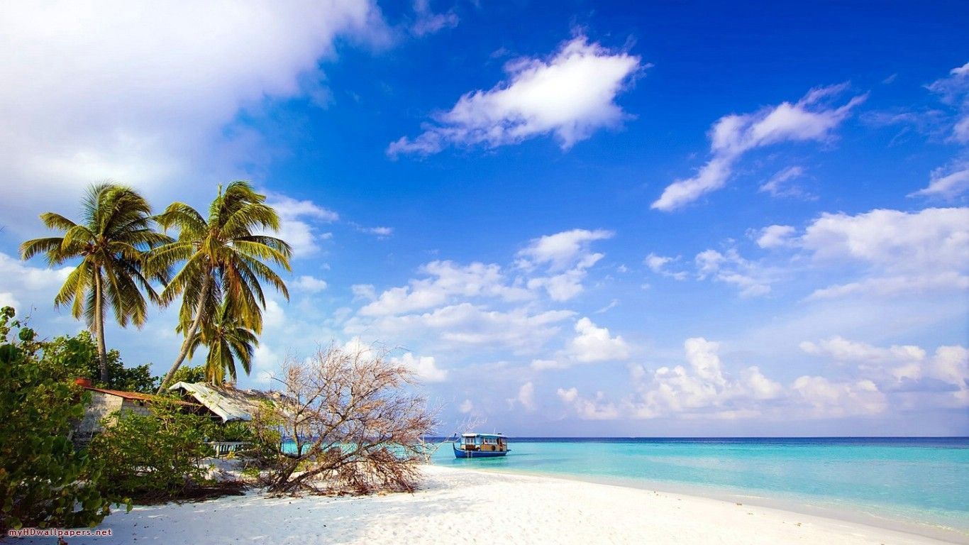 65 Aruba Beachfront Scene Desktop Wallpapers   Download at 1366x768