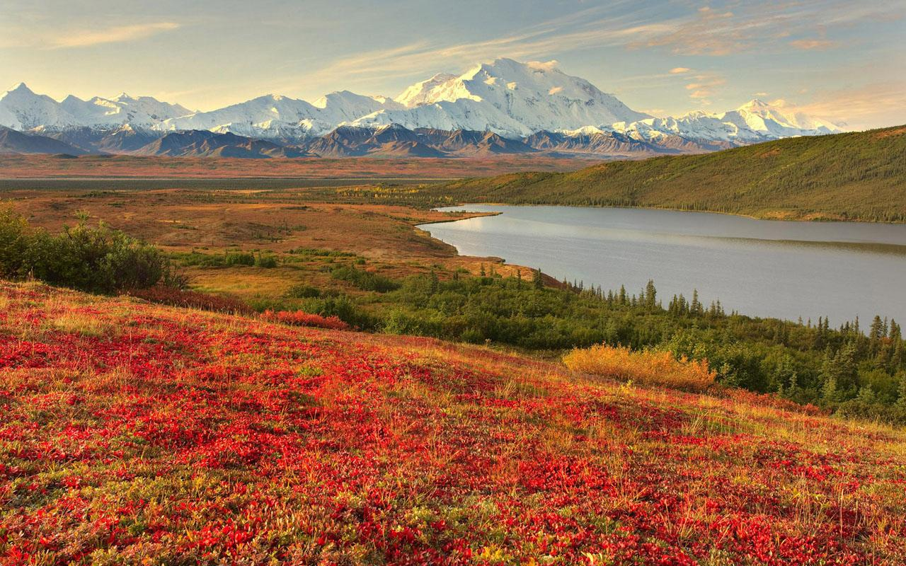 Alaska scenery   Travel Pictures 1280x800