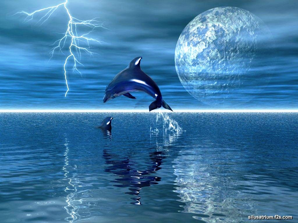 living 3d dolphins animated backgrounds   Hot HD Wallpapers   Hot HD 1024x768