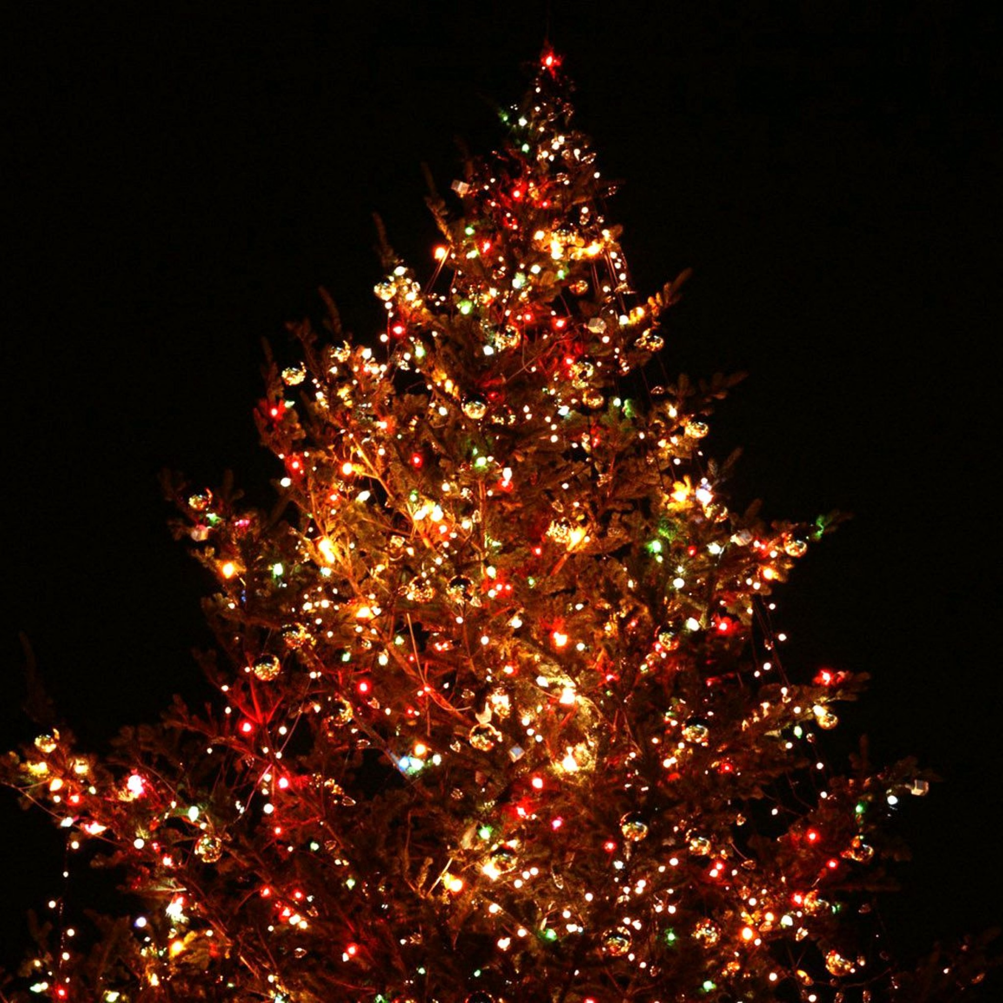Christmas Wallpaper For Ipad Cool HD Wallpaper for Iphone 2048x2048