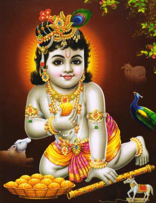 Kannan God Wallpapers   Kirushnar God Desktop Wallpapers Download 501x650