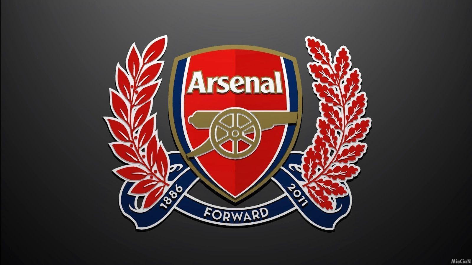 Arsenal Logo Wallpapers 2015 1600x900