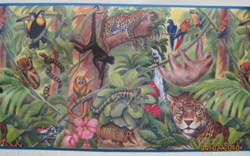 Wallpaper Border BY2001B 135 Inch Jungle Animals Print   Borders 500x311
