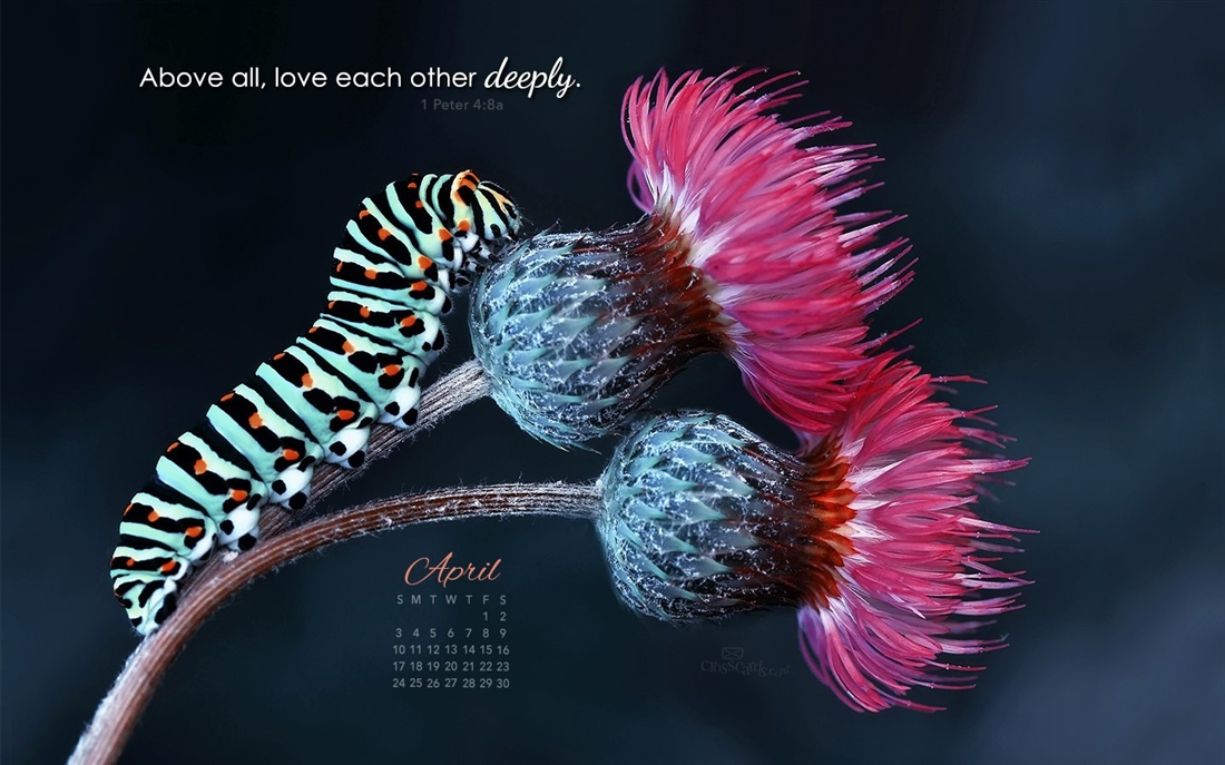 April 2016   Love Deeply Desktop Calendar  April Wallpaper 1100x687