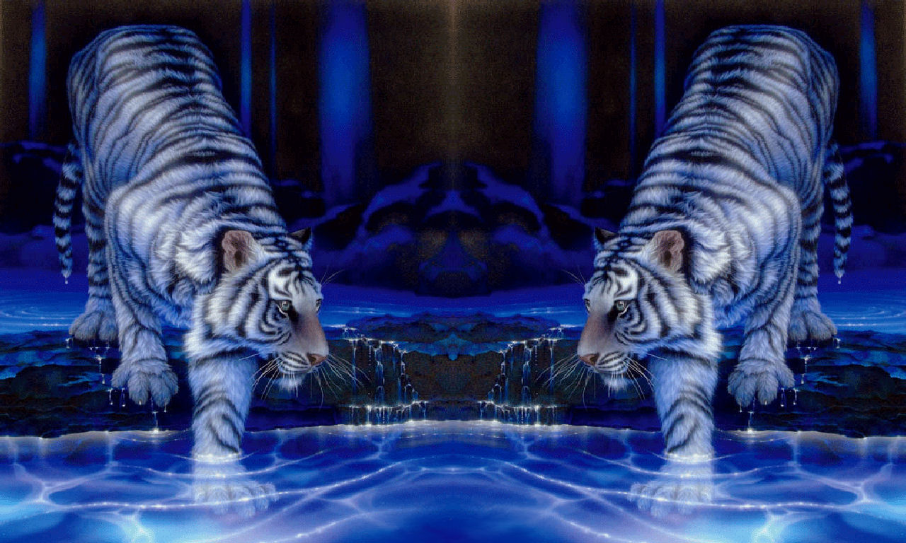 3D Tiger Screensavers httpwwwpic2flycom3DTigerScreensavers 1280x768