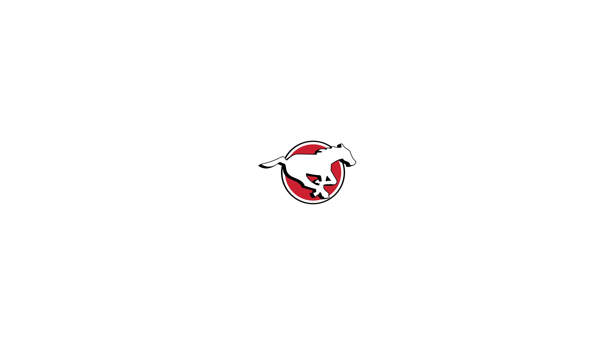 Calgary Stampeders 2560x1440