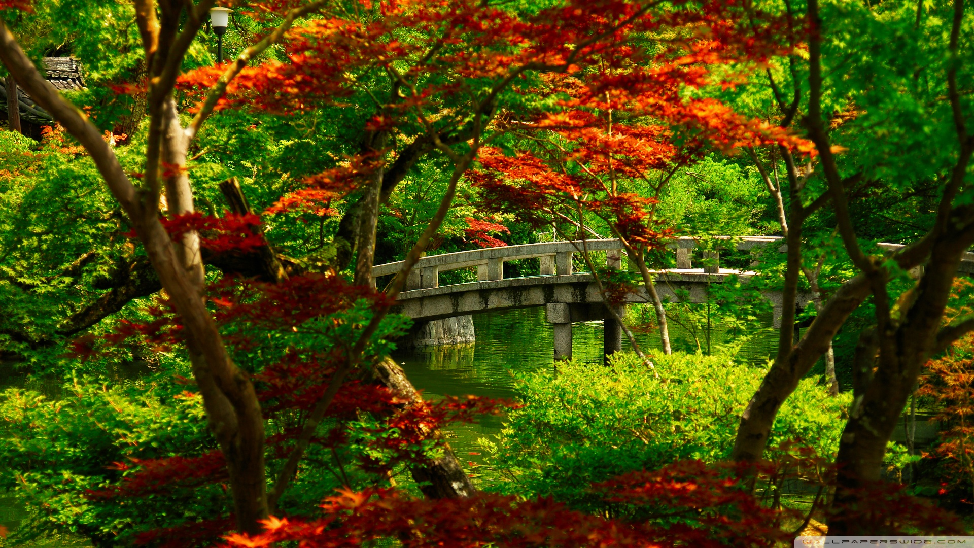 Japanese Garden Kyoto Wallpaper 1920x1080